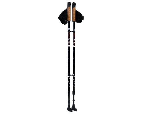 Палки для ходьбы Gess Basic Walker двухсекционные